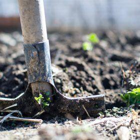 Waarom een tuinafval container huren het milieu helpt